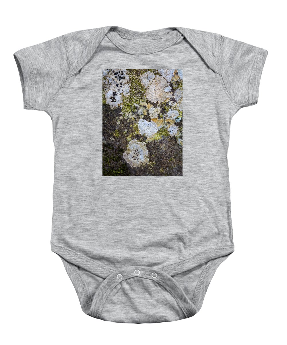 Nature Baby Onesie featuring the photograph Mold Study by Scott Breazeale