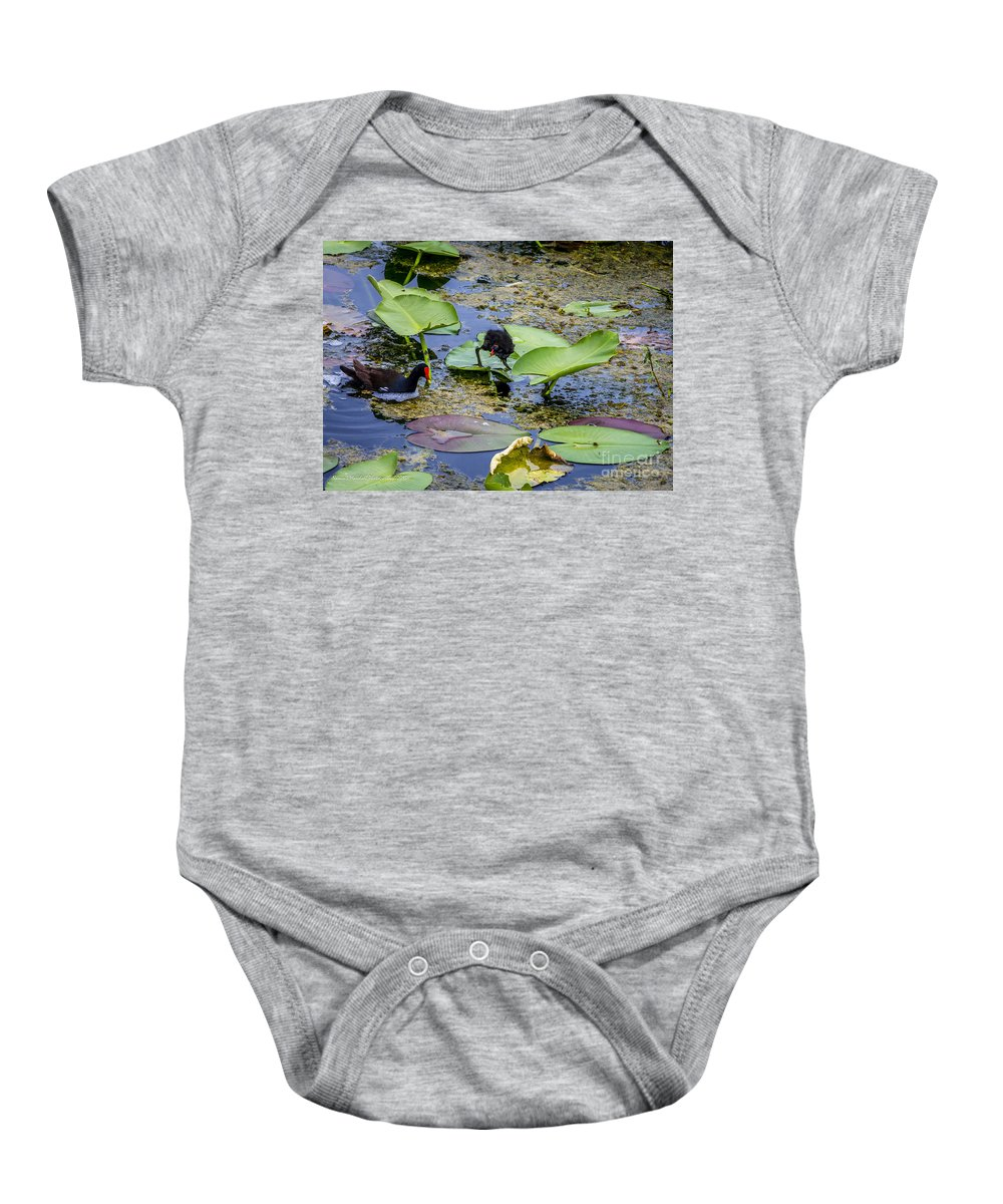 Animal Baby Onesie featuring the photograph Moorhen N Baby 2 by Nancy L Marshall