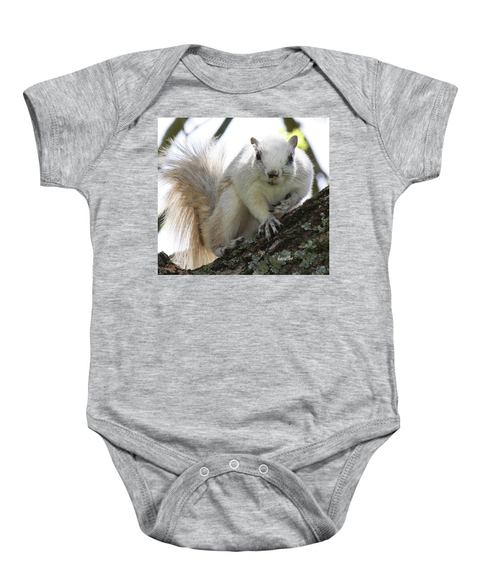 Squirrel Baby Onesie featuring the photograph Mr. Inquisitive II by Betsy Knapp
