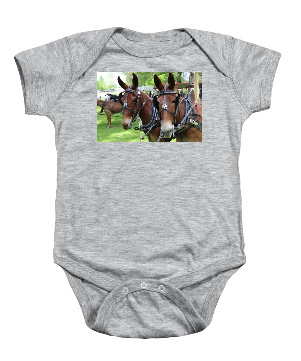 Mule Baby Onesie featuring the photograph Mules 6 by Dwight Cook
