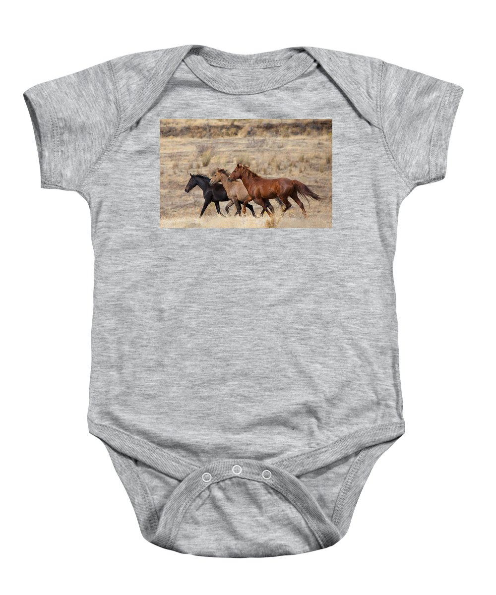 Horses Baby Onesie featuring the photograph Mustang Trio by Mike Dawson