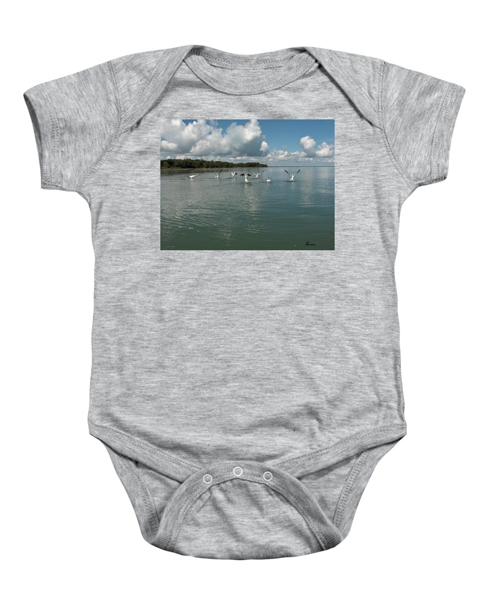 Pelicans Lake Water Trees Shore Beach Clouds Birds Water Foul Baby Onesie featuring the photograph My Pelicans by Andrea Lawrence