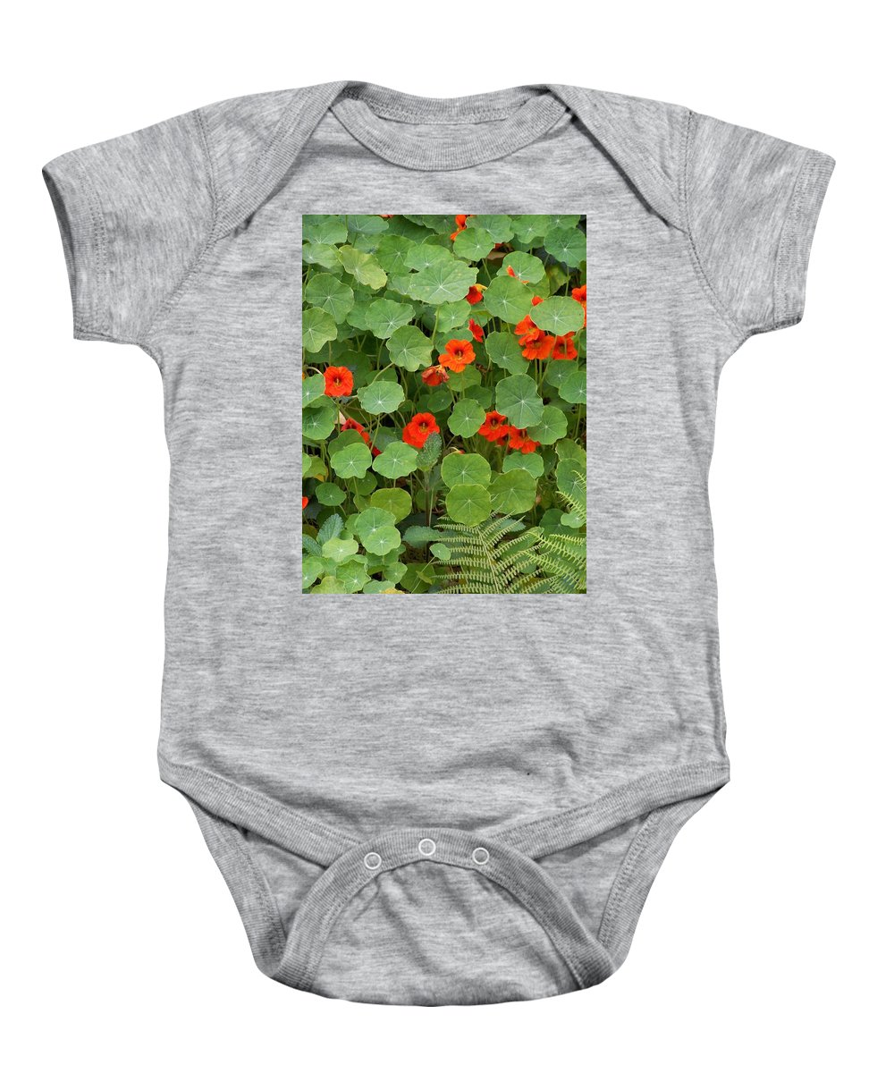 Nasturtiums Baby Onesie featuring the photograph Nasturtiums by Gale Cochran-Smith