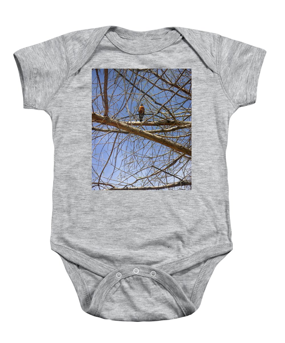 Nature Baby Onesie featuring the photograph Nature In The Wild - Annoucing Spring by Lucyna A M Green