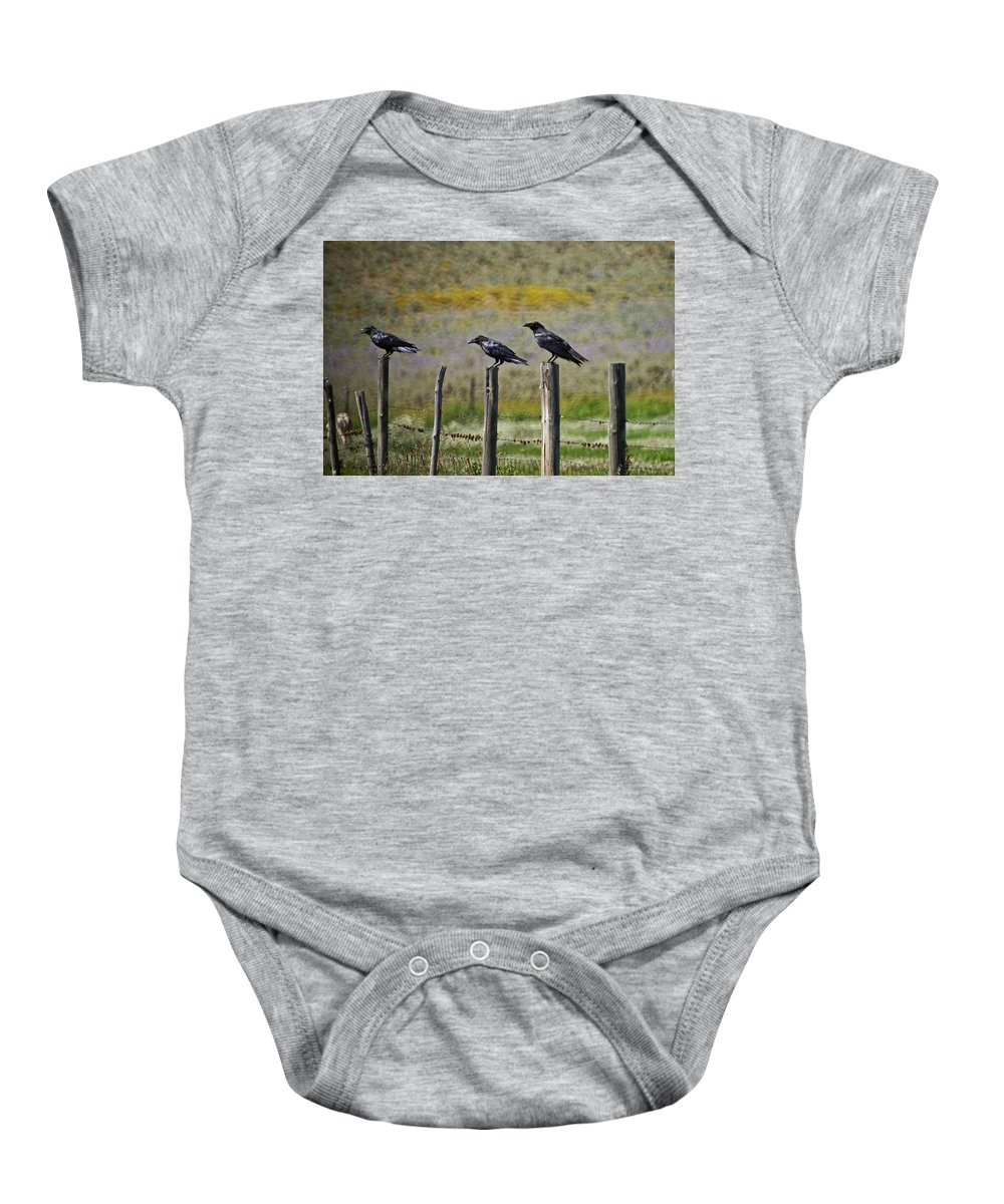 Crows Baby Onesie featuring the photograph Neighborhood Watch Crows by Heather Coen