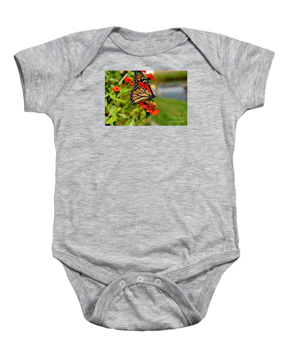 Landscape Baby Onesie featuring the photograph October Butterfly by Kimberly Dawn Hendley