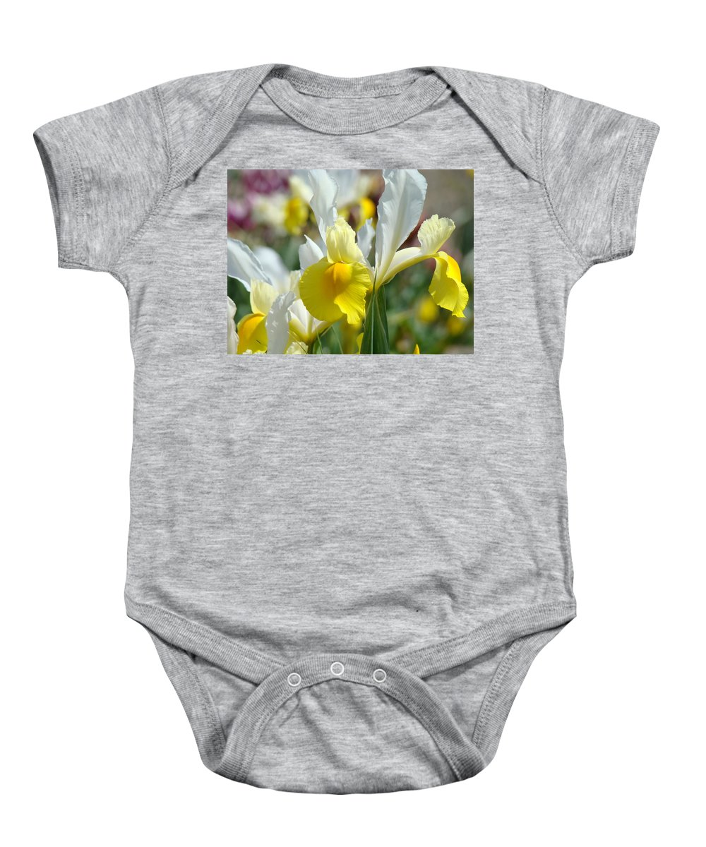 Iris Baby Onesie featuring the photograph Office Art Botanical Iris Flower Garden Giclee Prints Baslee Troutman by Baslee Troutman
