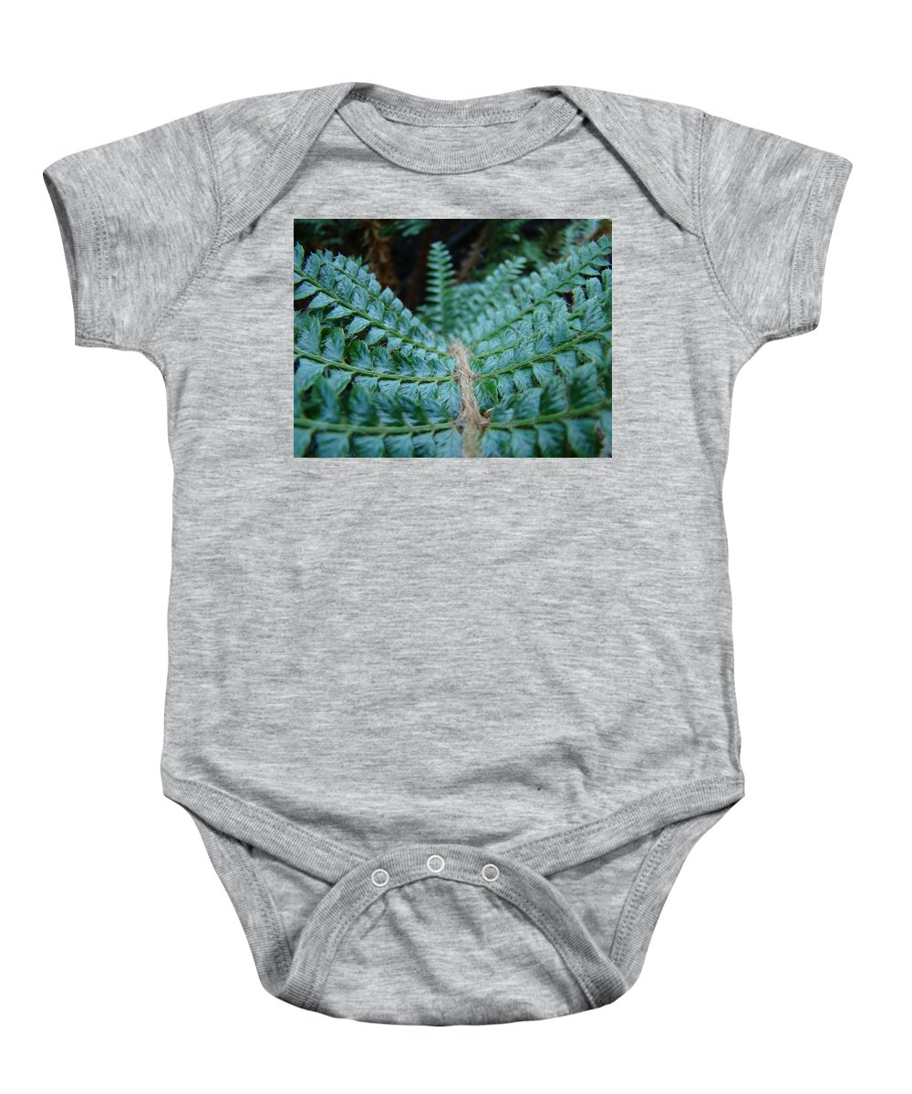 Fern Baby Onesie featuring the photograph Office Art Forest Ferns Green Fern Giclee Prints Baslee Troutman by Baslee Troutman