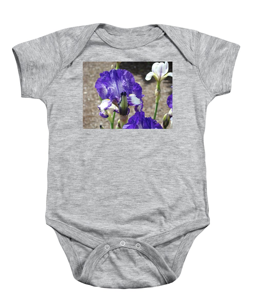 Office Baby Onesie featuring the photograph Office Art Prints Irises Flowers 46 Iris Flower Giclee Prints Baslee Troutman by Baslee Troutman