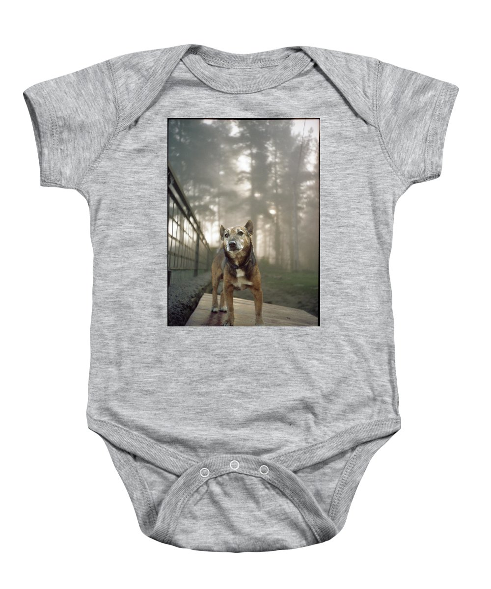 Dog Baby Onesie featuring the photograph Old Mac by Rafa Rivas