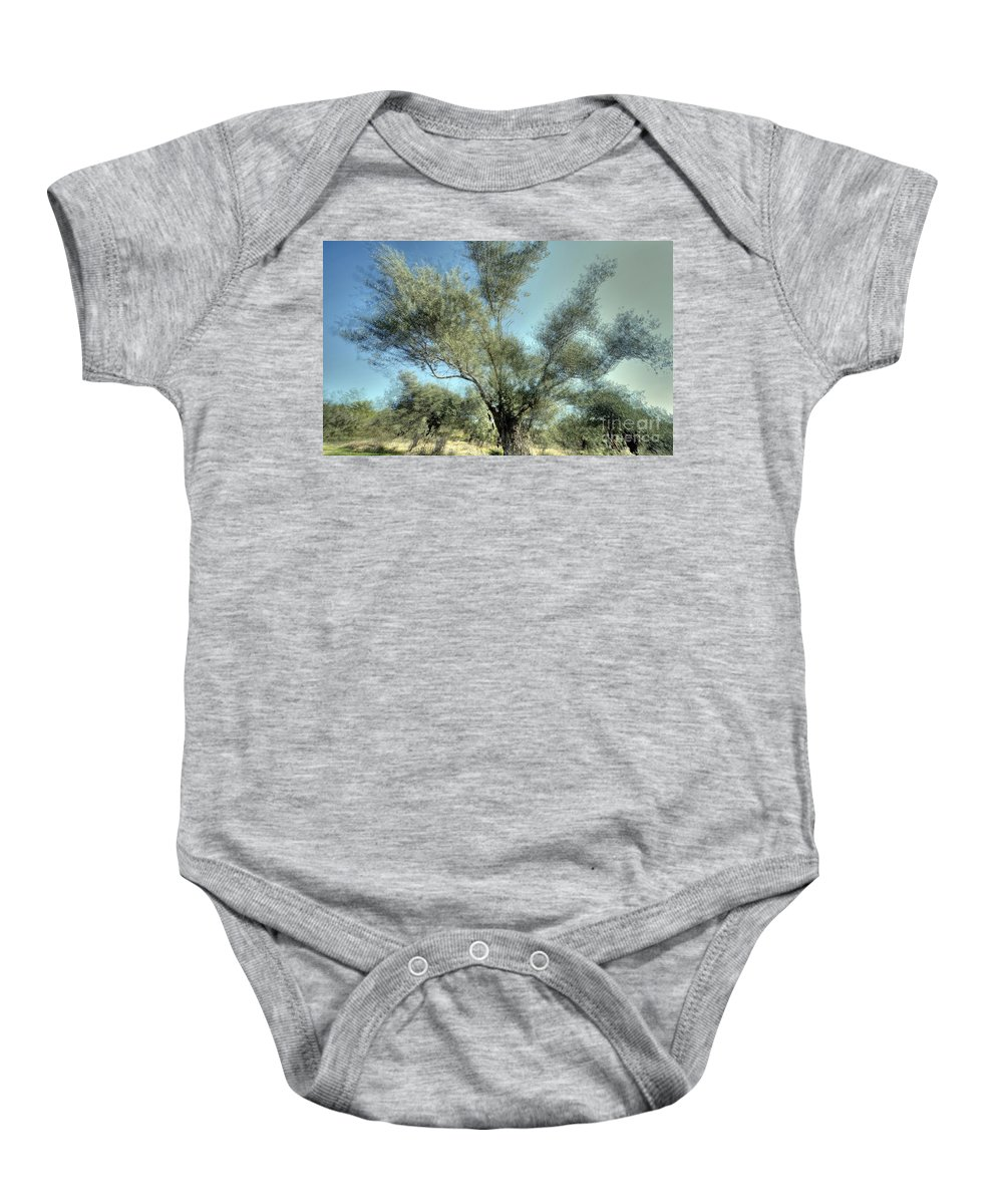 Olive Baby Onesie featuring the photograph Olive Trees by Vladi Alon