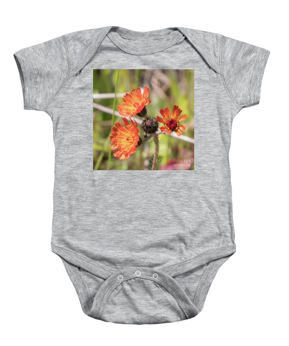 Orange Baby Onesie featuring the photograph Orange Small Flowers With Buds by Josephine Cleopahrt