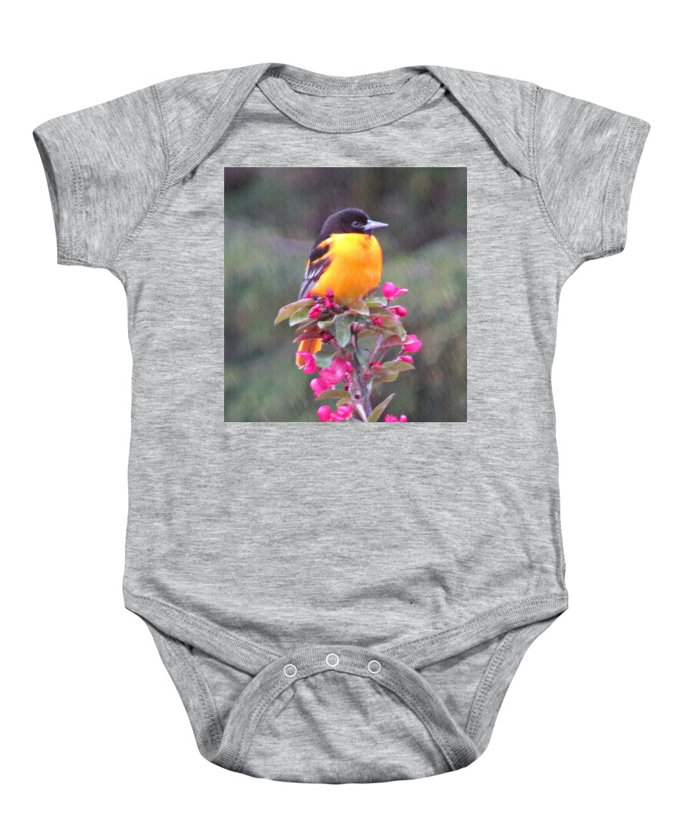 Oriole Baby Onesie featuring the photograph Oriole Orange by MTBobbins Photography
