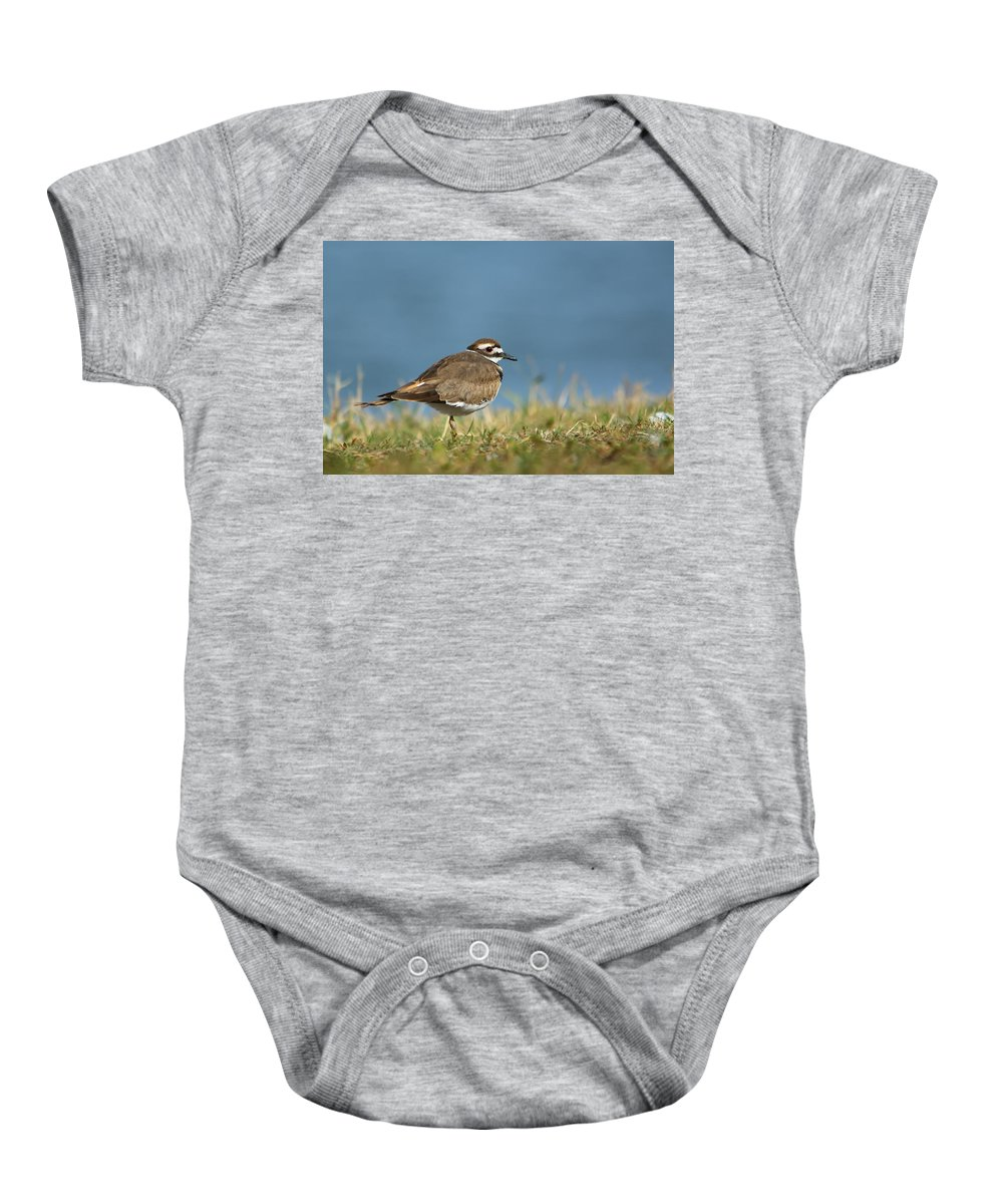 Nature Baby Onesie featuring the photograph Out For A Walk by Crystal Massop