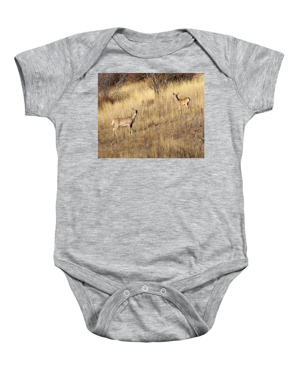 Spokane Baby Onesie featuring the photograph Outstanding In Their Field by Ben Upham III
