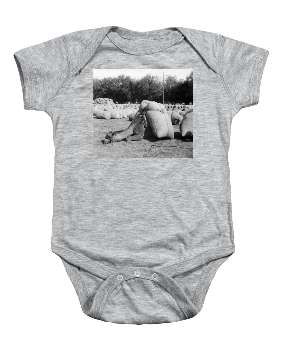 1910 Baby Onesie featuring the photograph Pack Camel, C1910 by Granger