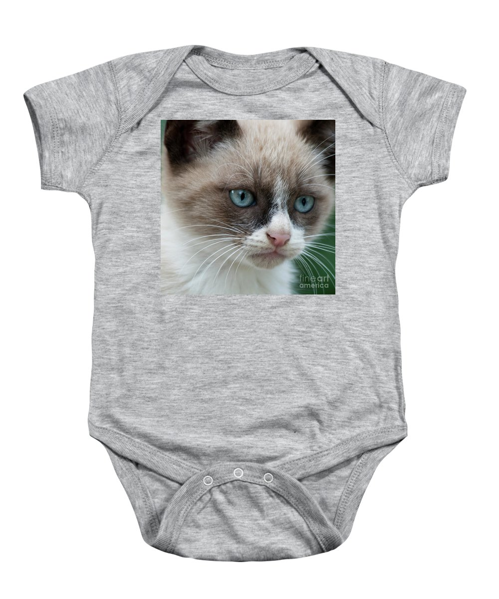 Cat Baby Onesie featuring the photograph Pauls Little Cat by Heiko Koehrer-Wagner