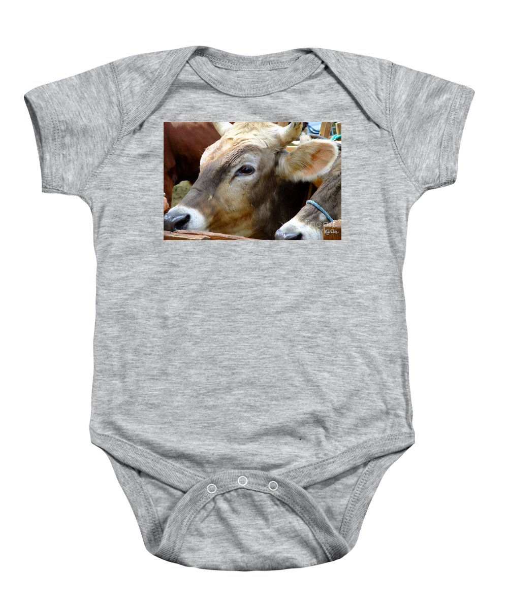 Animals Baby Onesie featuring the photograph Performance Anxiety by RC DeWinter
