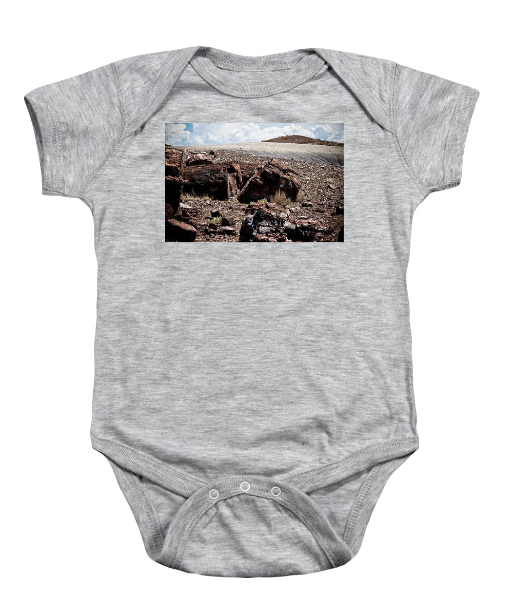 Petrified Forest Baby Onesie featuring the photograph Petrified Wood #2 by Robert J Caputo