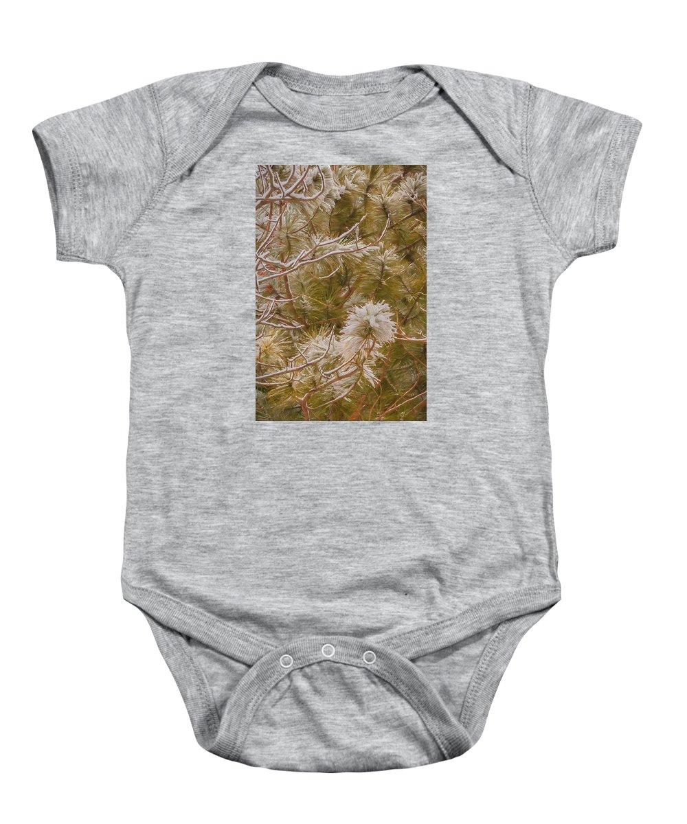 Winter Baby Onesie featuring the digital art Pine And Bitter Sweet Vine by Gary Rieks