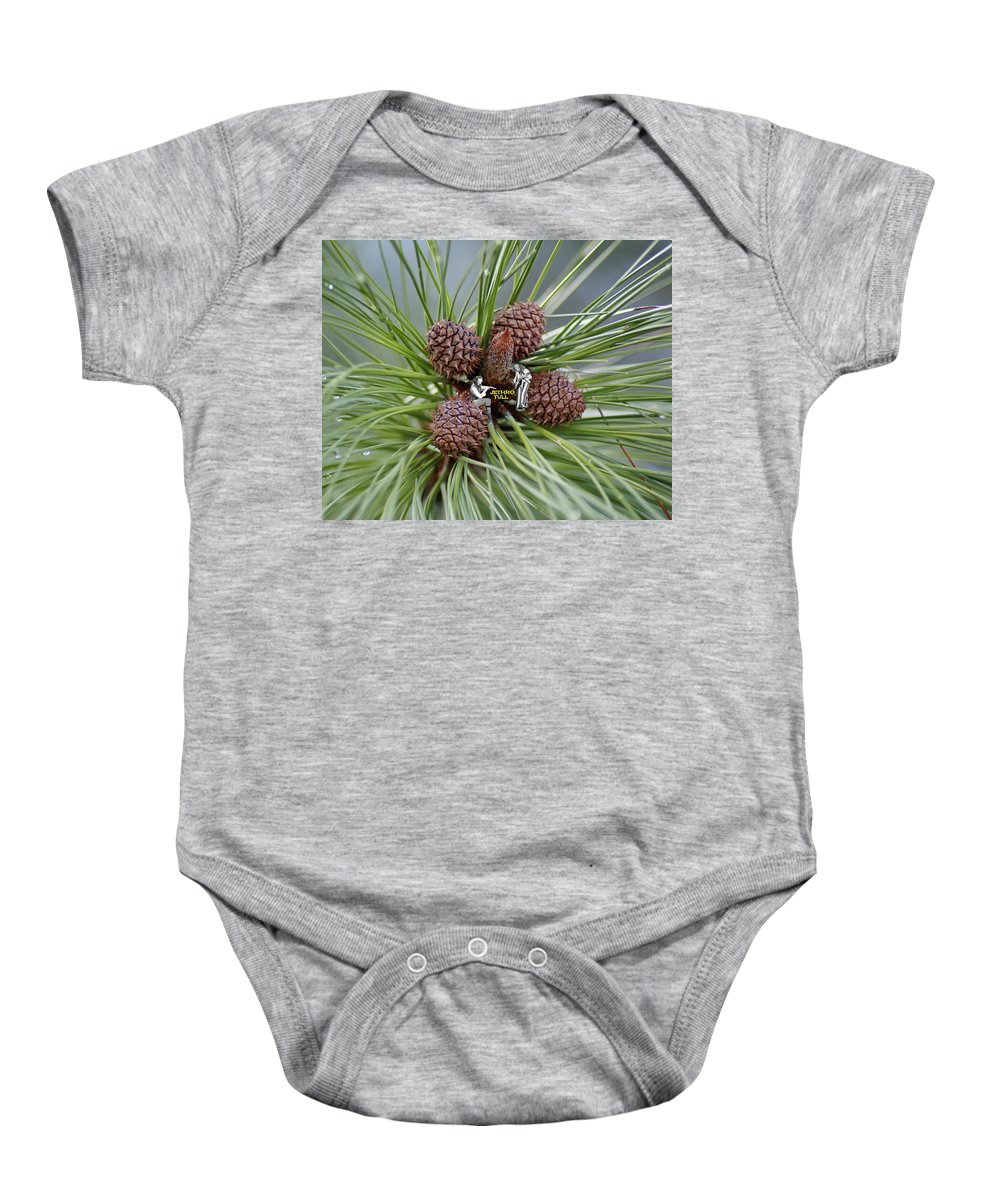 Jethro Tull Baby Onesie featuring the photograph Pinecone Tull by Ben Upham