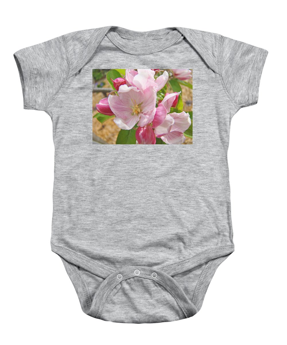 Blossom Baby Onesie featuring the photograph Pink Apple Blossoms Art Prints Spring Trees Baslee Troutman by Baslee Troutman