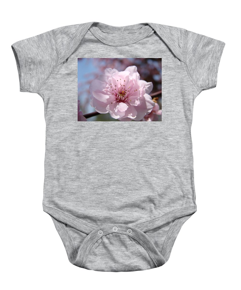 �blossoms Artwork� Baby Onesie featuring the photograph Pink Blossom Nature Art Prints 34 Tree Blossoms Spring Nature Art by Baslee Troutman