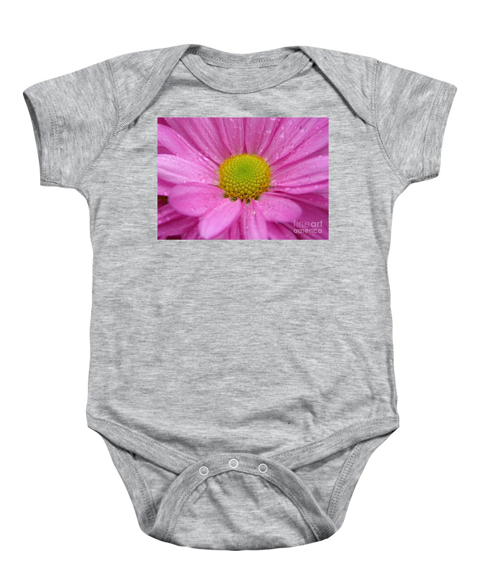 Pink Daisy Baby Onesie featuring the photograph Pink Daisy With Raindrops by Carol Groenen