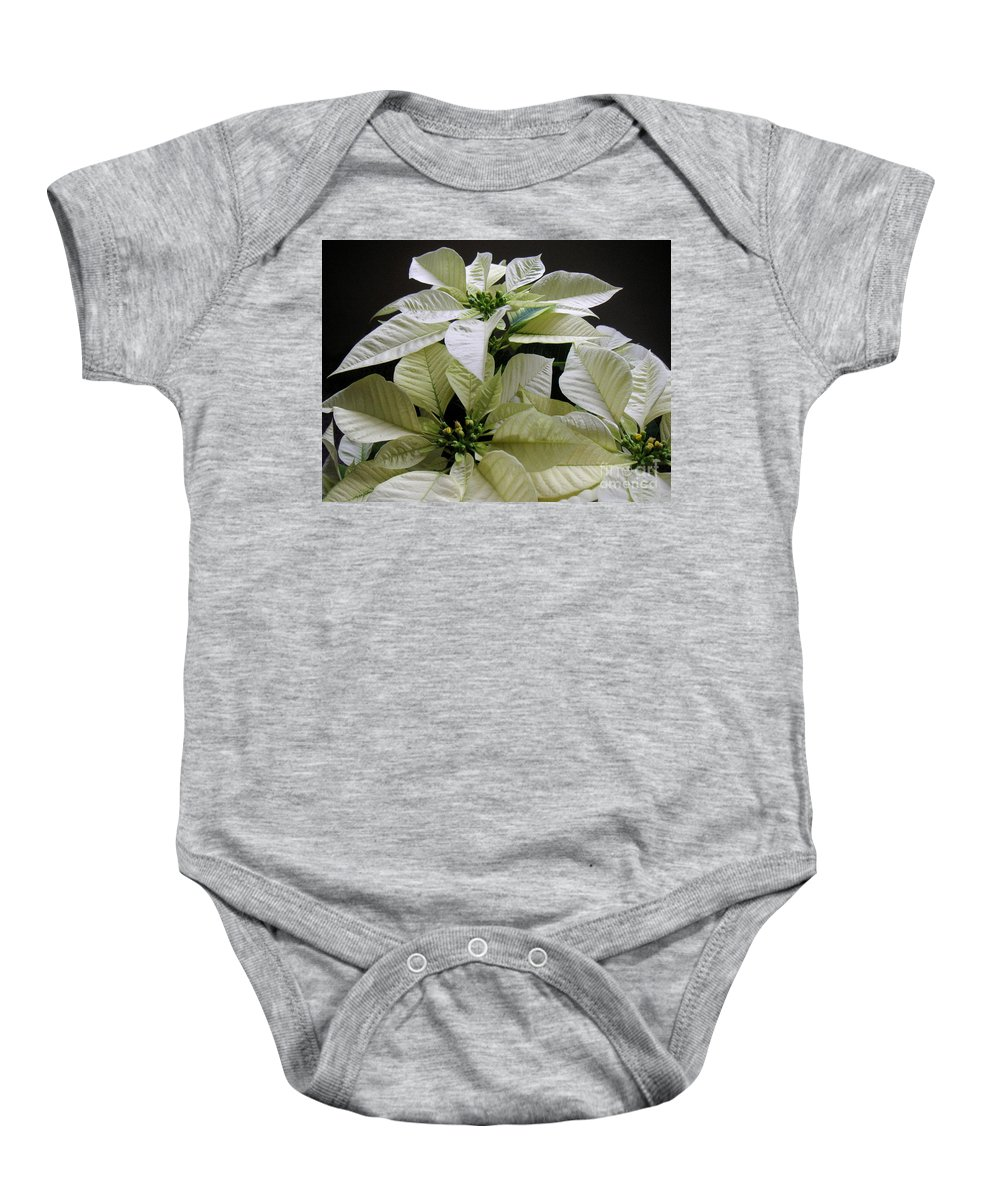 Nature Baby Onesie featuring the photograph Poinsettias - Winter White At Night by Lucyna A M Green