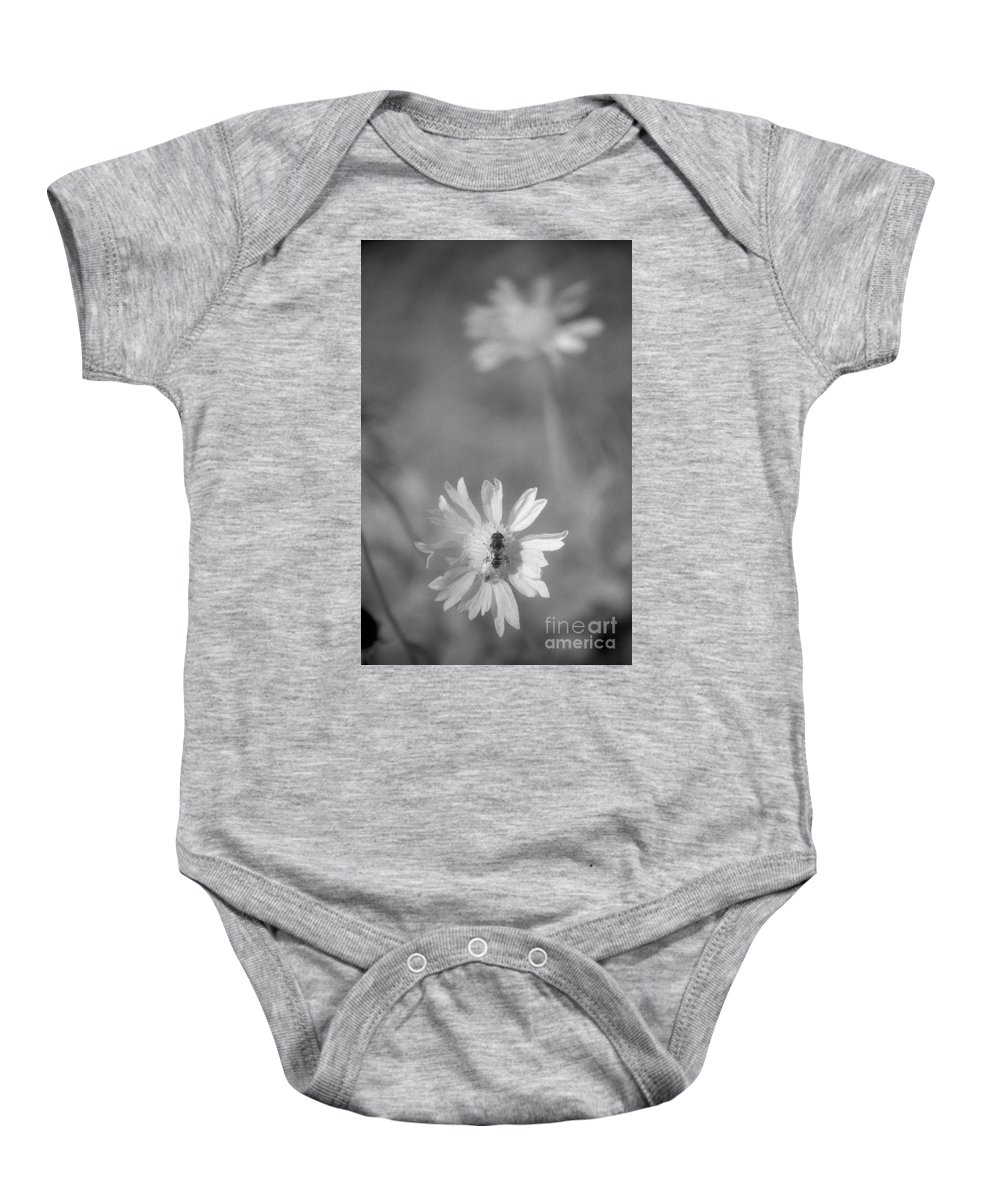 Pollinate Baby Onesie featuring the photograph Pollination by Richard Rizzo