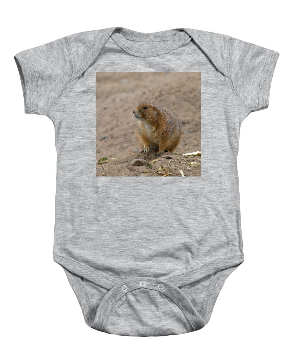 Lehtokukka Baby Onesie featuring the photograph Prairie Dog by Jouko Lehto