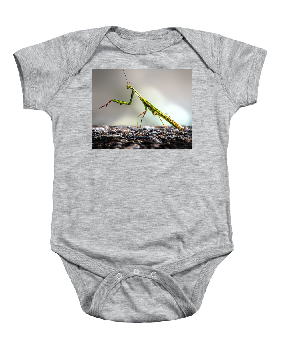 Mantis Baby Onesie featuring the photograph Praying Mantis by Bob Orsillo