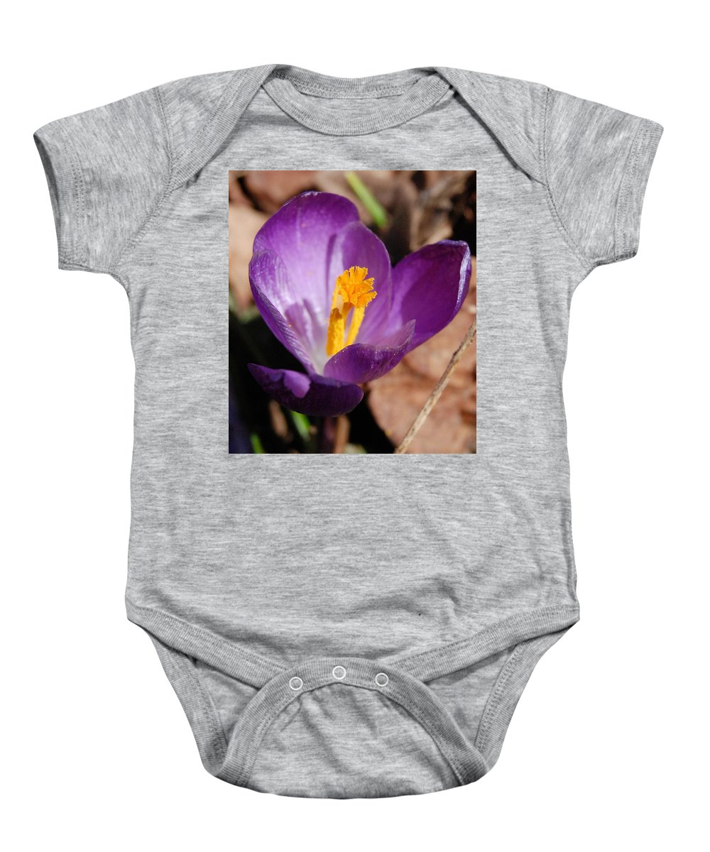 Digital Photography Baby Onesie featuring the photograph Purple Crocus by David Lane