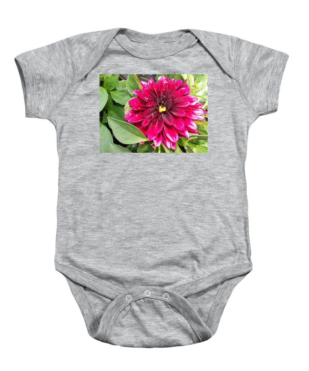 Purple Baby Onesie featuring the photograph Purple Dahlia by Pamela Pursel