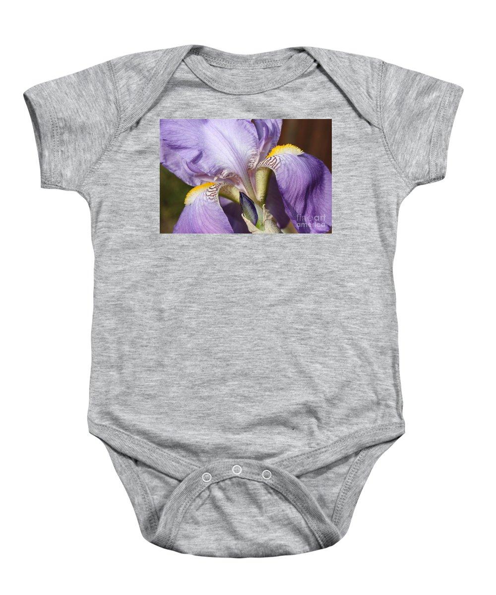 Purple Iris Baby Onesie featuring the photograph Purple Iris Beauty by Carol Groenen