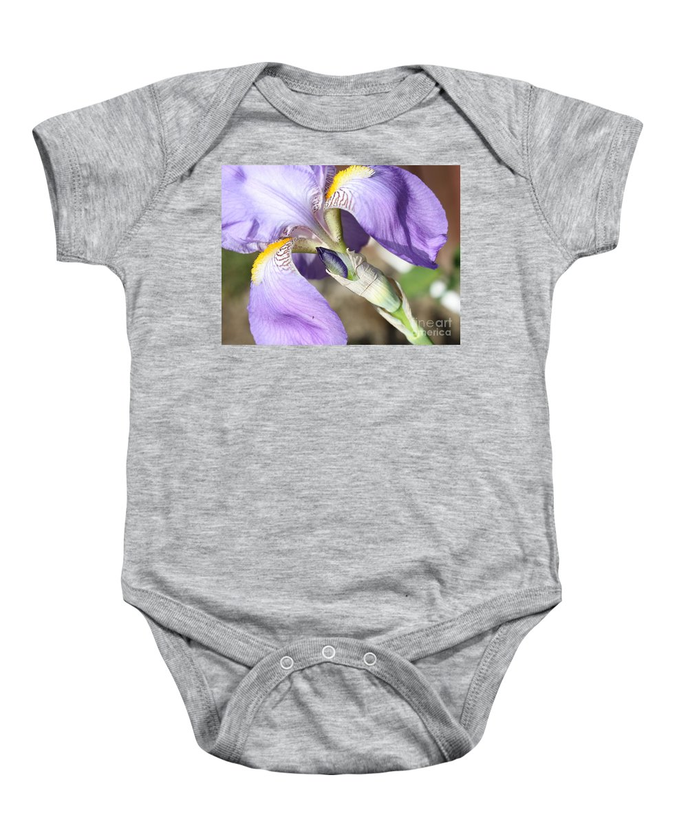 Iris Baby Onesie featuring the photograph Purple Iris With Focus On Bud by Carol Groenen