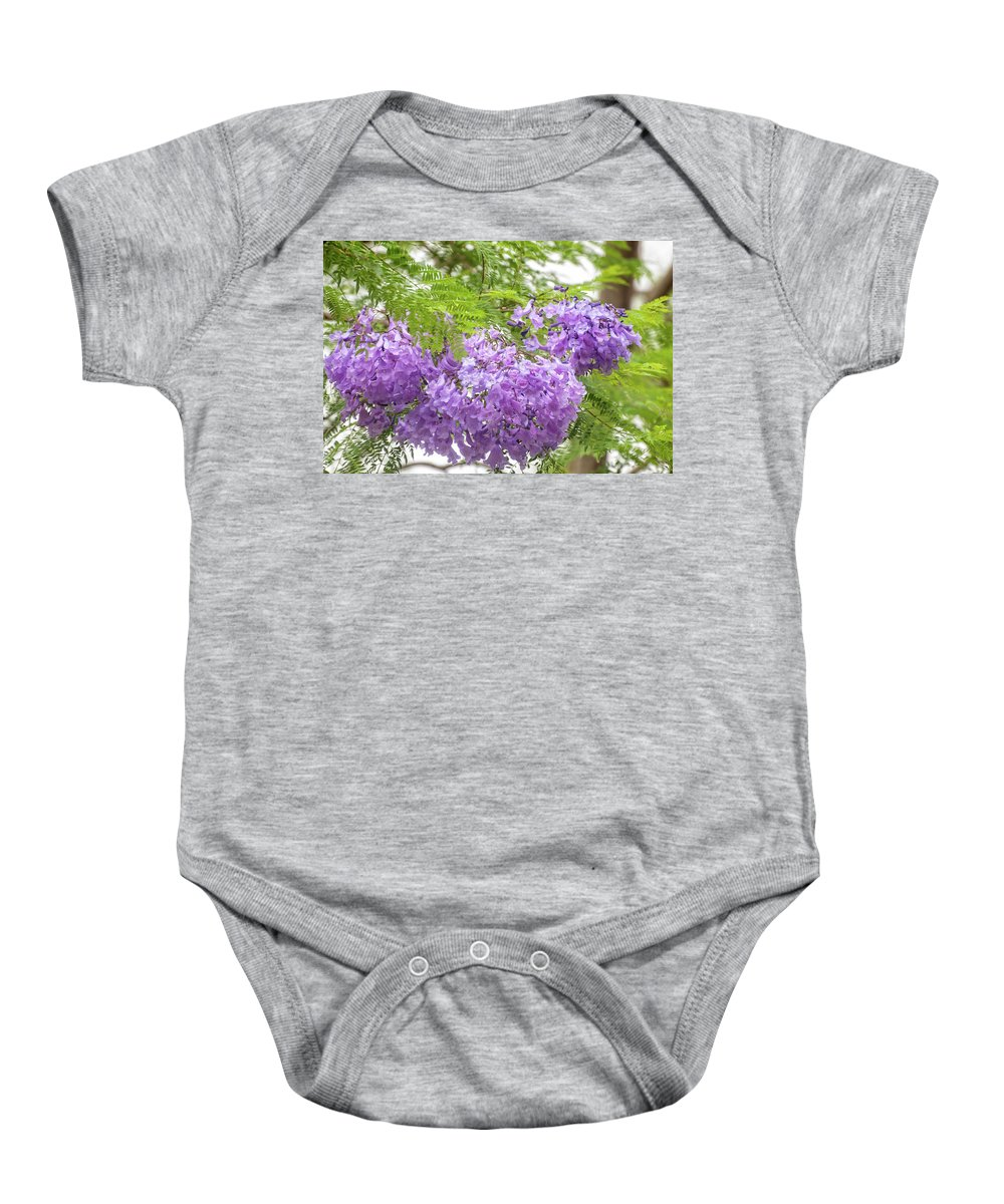 Australia Baby Onesie featuring the photograph Purple Jacaranda Flowers Close-up by Daniela Constantinescu