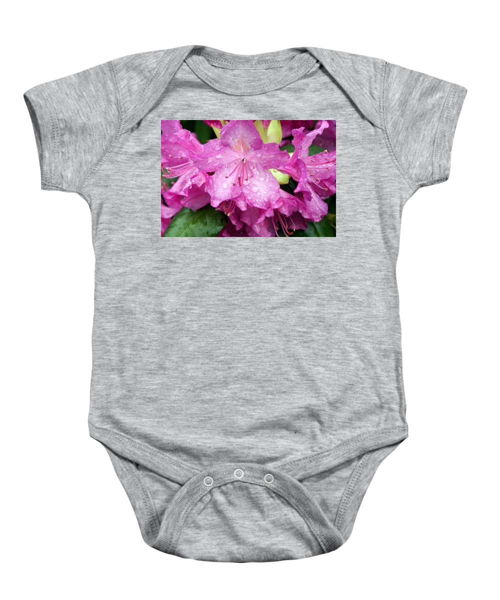Flowers Baby Onesie featuring the photograph Purple Pink Horizontal by Marty Koch