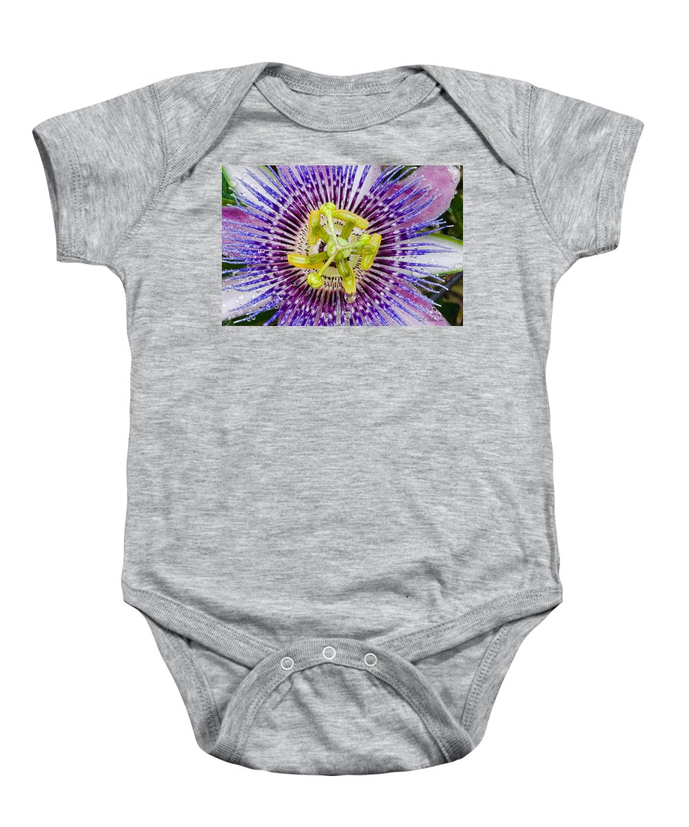 Passion Baby Onesie featuring the photograph Purple Radial by Christopher Holmes