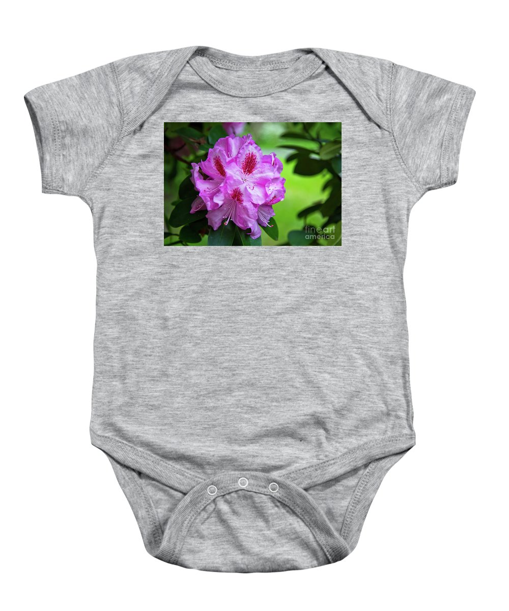 Flora Baby Onesie featuring the photograph Purple Spring 15 by Alex Art and Photo
