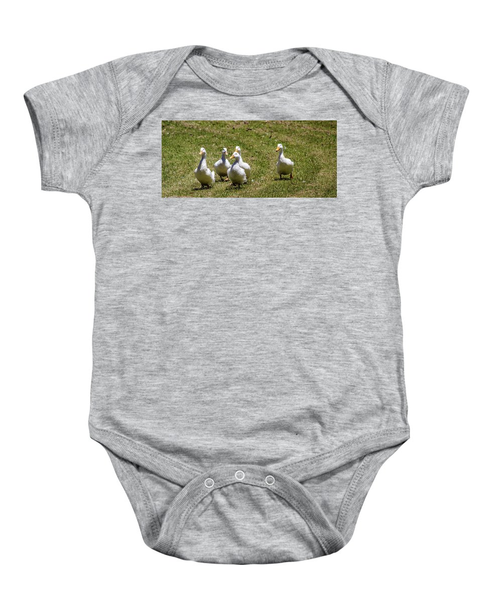 Ducks Baby Onesie featuring the photograph Race Day by Tania Read