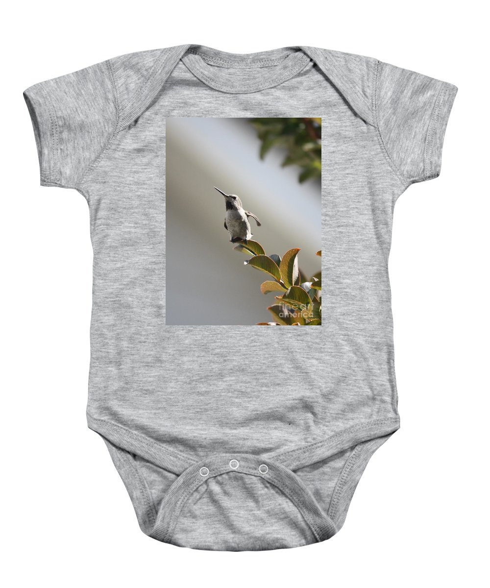 Hummingbird Baby Onesie featuring the photograph Ready For Takeoff by Carol Groenen