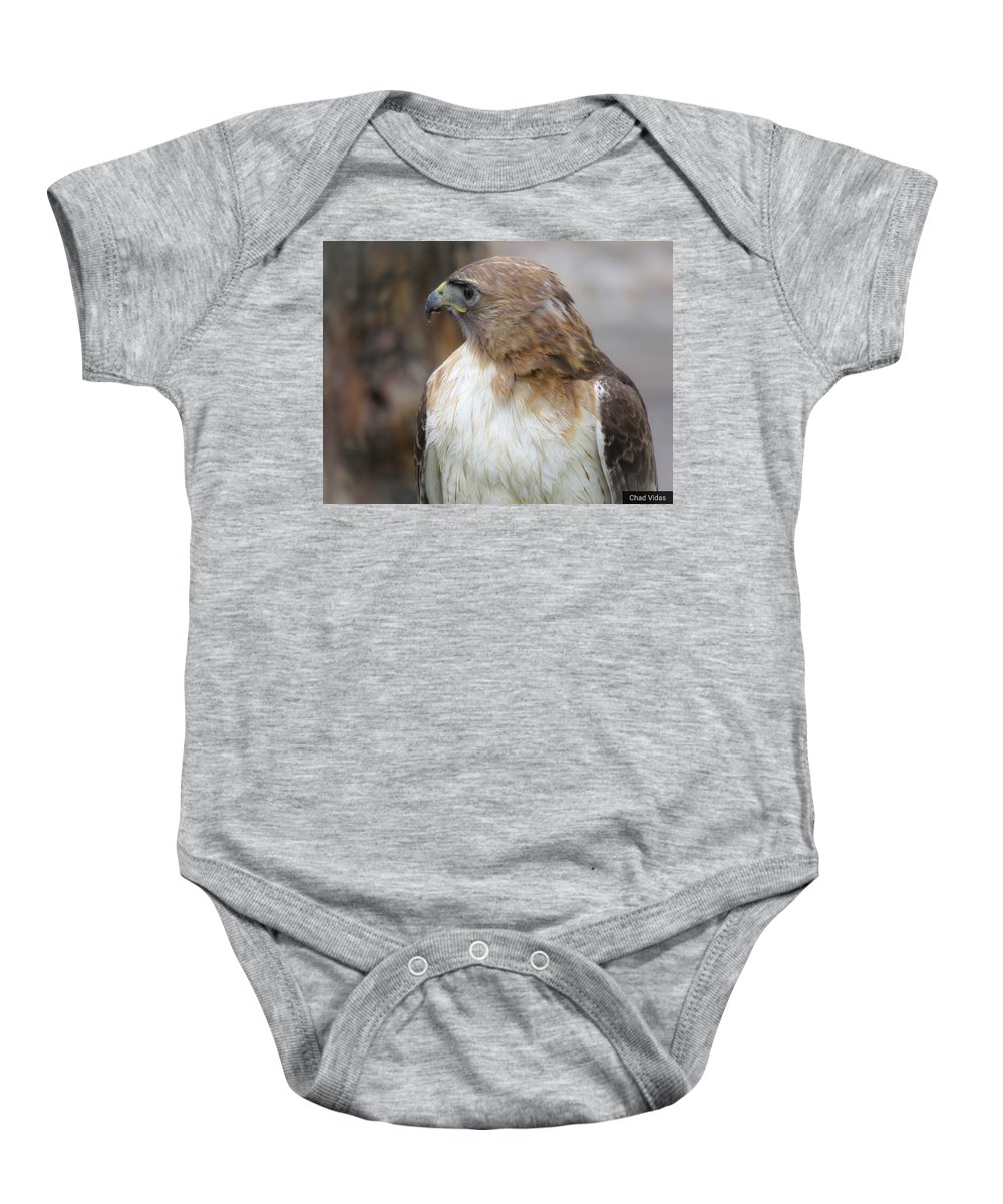 Red-tail Hawk Baby Onesie featuring the photograph Ready To Hunt by Chad Vidas