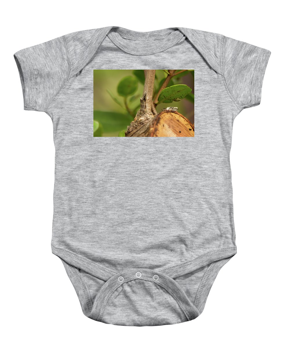 Leaf Baby Onesie featuring the photograph Rebirth by Mayra Pau