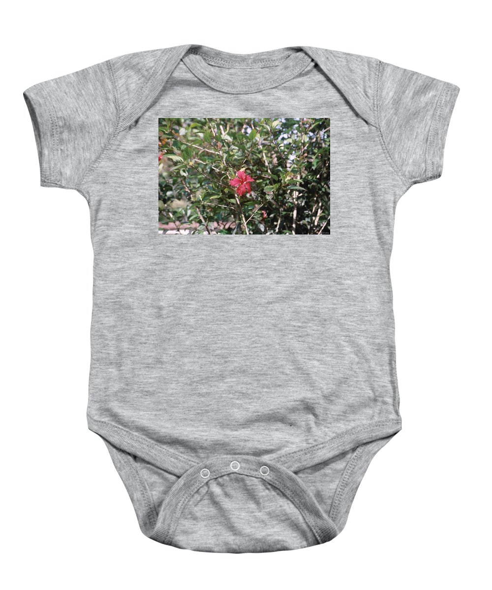 Flower Baby Onesie featuring the photograph Red And Green by David Cardona