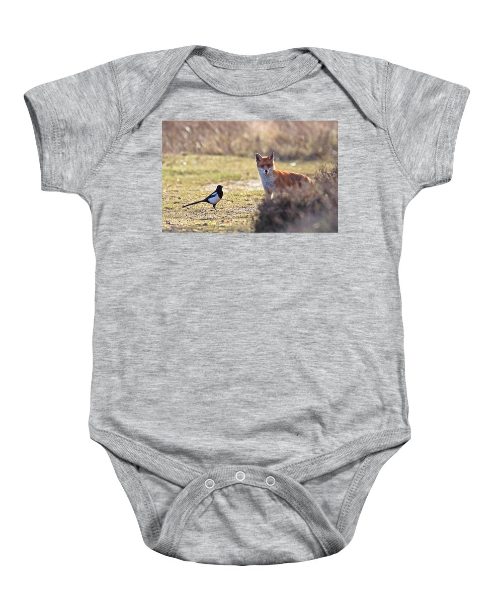 Magpie Baby Onesie featuring the photograph Red Fox and magpie by Bob Kemp