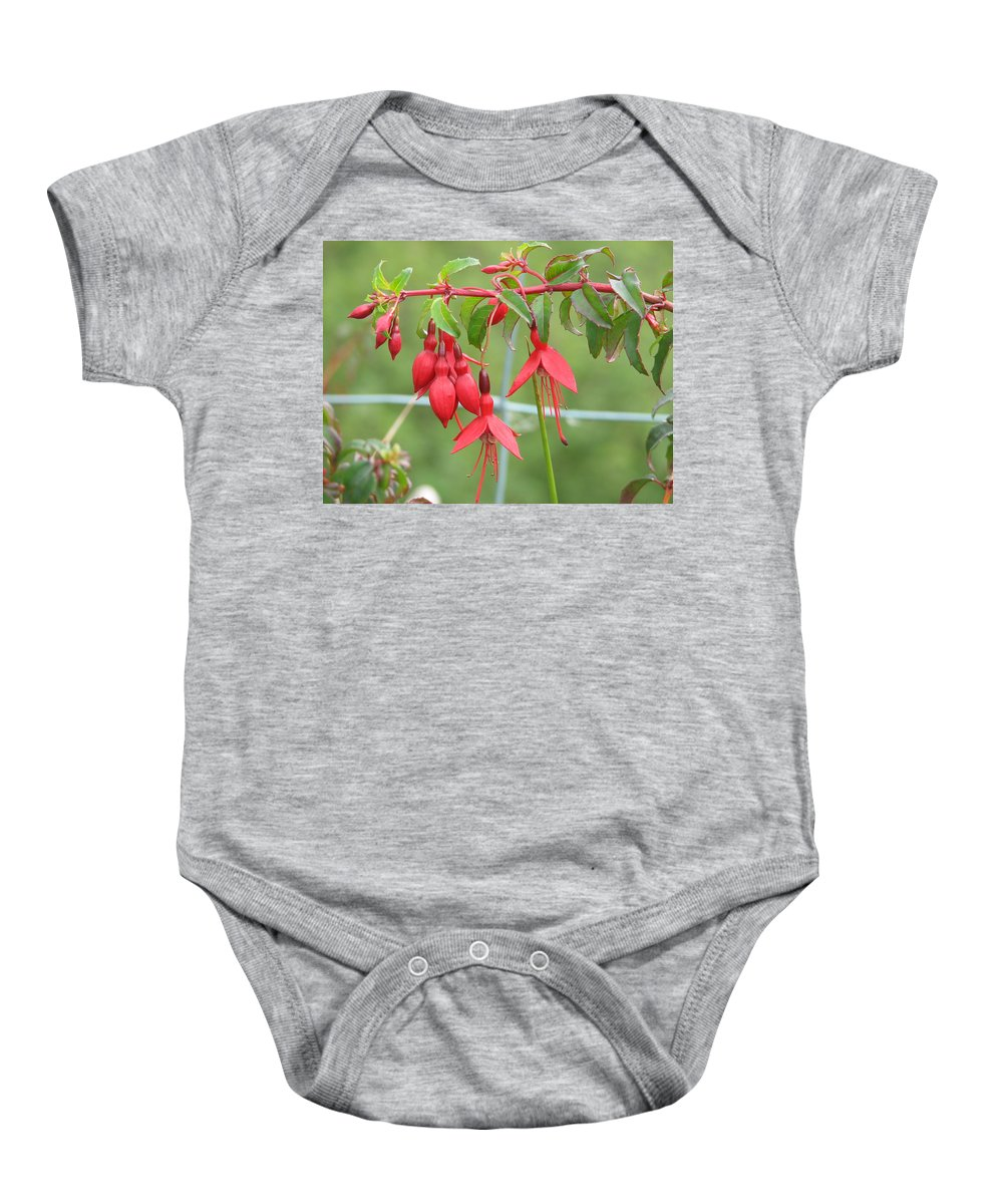 Fresia Baby Onesie featuring the photograph Red Fresia by Kelly Mezzapelle
