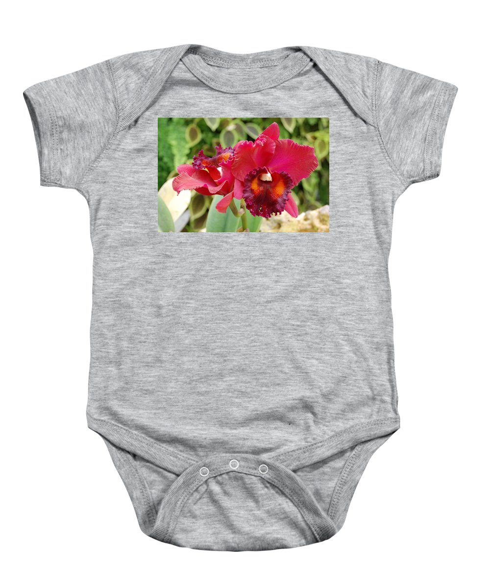 Macro Baby Onesie featuring the photograph Red Orchid by Rob Hans