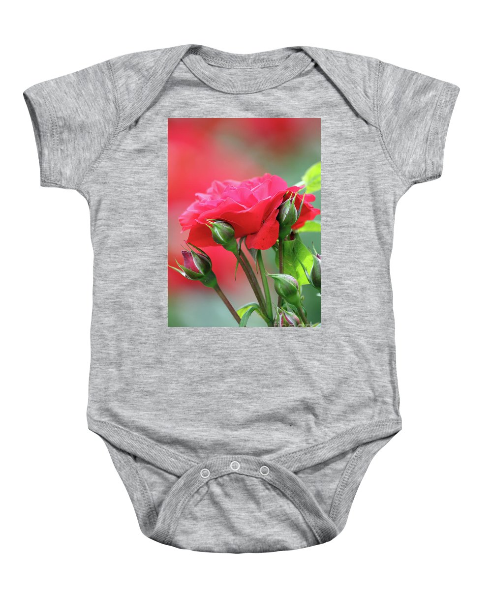 Rose Baby Onesie featuring the photograph Red Rose Flower by Goce Risteski