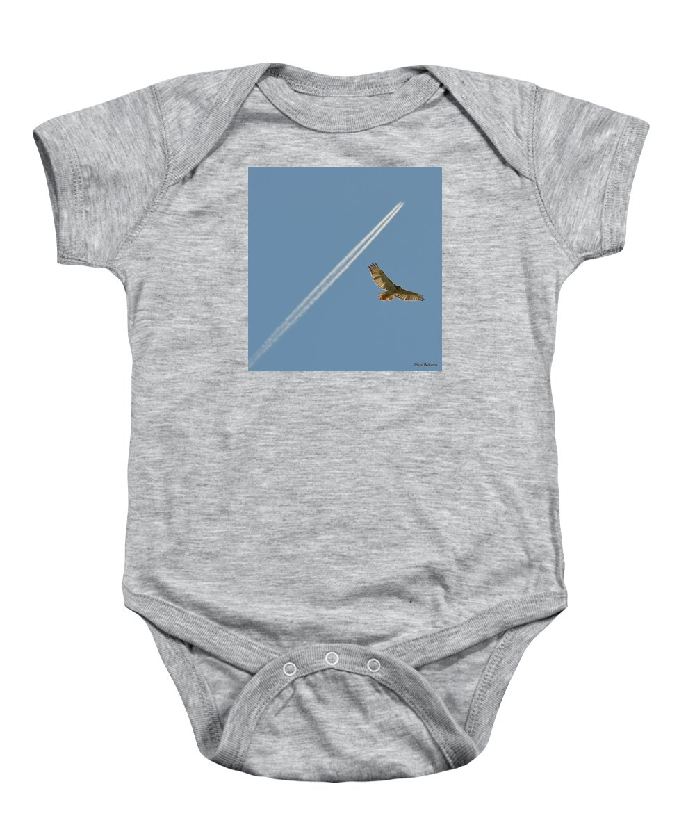 Red Tailed Hawk W Vapour Trail Baby Onesie featuring the photograph Red Tailed Hawk And Jet Vapour Trail by Glyn Williams